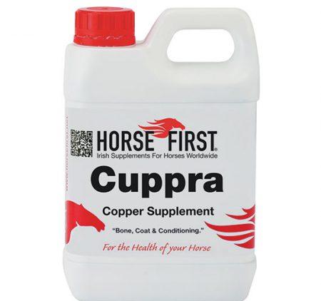 Horse First Cuppra