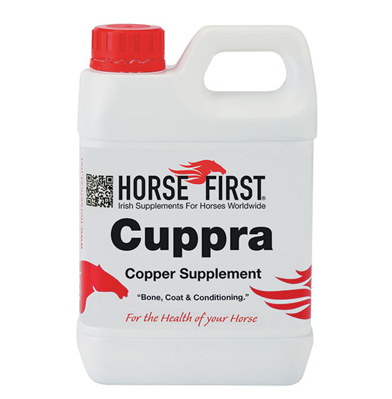 Horse First Cuppra