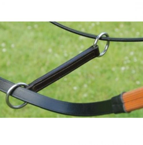 Irish Martingale