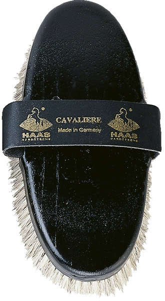 Haas Cavaliere